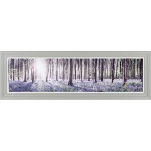 Canvases  Bluebell Glade