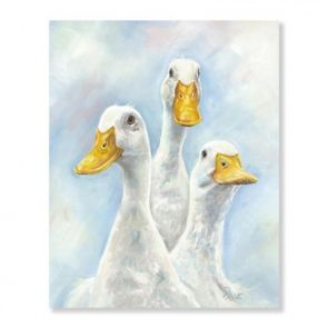 Canvases  Ducks