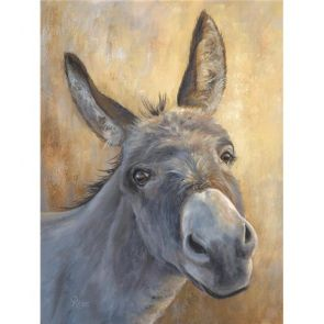 Canvases  Little Donkey